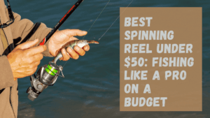 Best Spinning Reel Under 50 Dollars